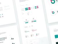 Educational Platform Style Guide