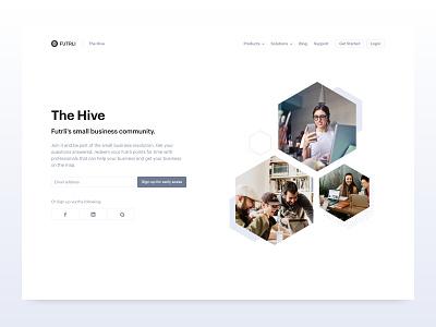 The Hive brand identity business community marketing web hexagon hive branding
