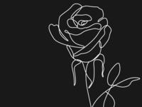 Rose Line Art Dark