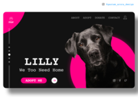 Dog Adoption website