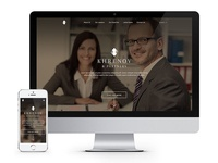 Russian Law Firm Homepage Concept