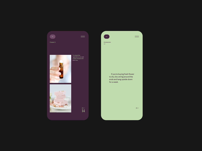 Home perfumes - Design direction mobile screens slides design direction editorial design typogaphy visual design perfume fashion cosmetics editorial video layout minimal typography web website