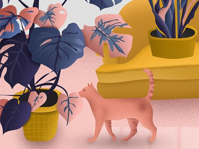 Plants & Cats couch monstera animals cat pink vector illustrator illustration texture grain nature plants