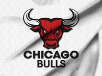 Play with the Chicago Bulls logo