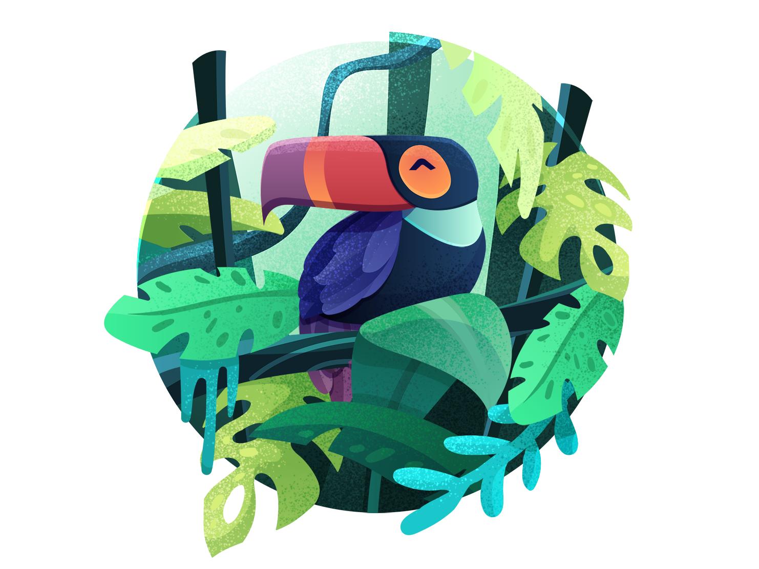 Tucan hues rainforest daily art jungle book tucan jungle minimal flat photoshop illustration vector adobe illustrator