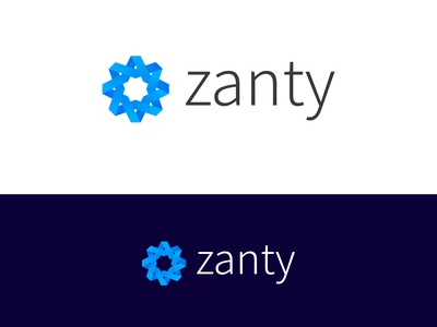 Zanty Logo and Branding