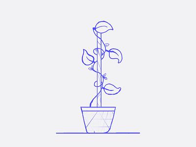 Plant doodle vine vase leaves decoration plant illustration sketch