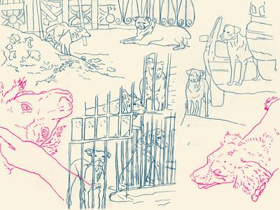 """full illustrations for """"dogs da vila são francisco"""""""