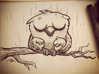Owlsintherain 4web