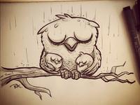 Owlsintherain 4web