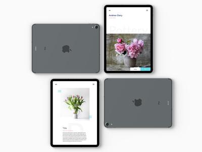 Ceramic | Website