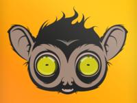 Big eyed tarsier