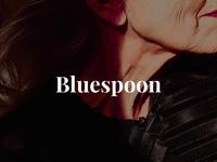 Bluespoon 1/3