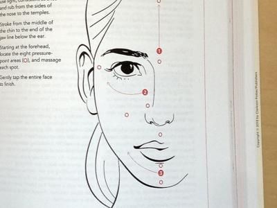 Facial Massage facial massage martha stewart living the good long life illustration
