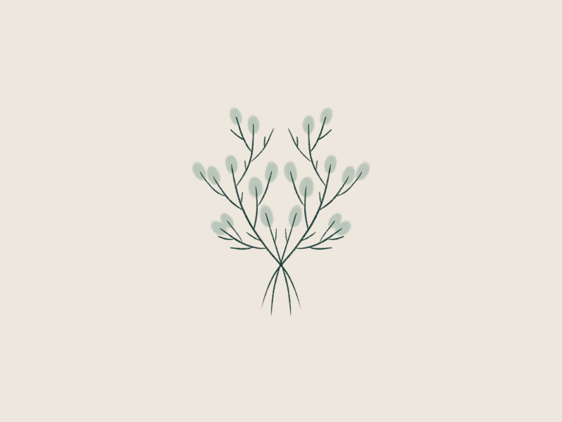 Procreate Symmtrey ipad green leaves handdraw drawing graphic design minimal nature twigs symmetric symmetry botanical procreate
