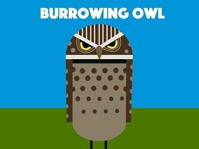 Burrowing owl owl birds illustration