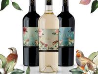 Avialae - Wine Label Design