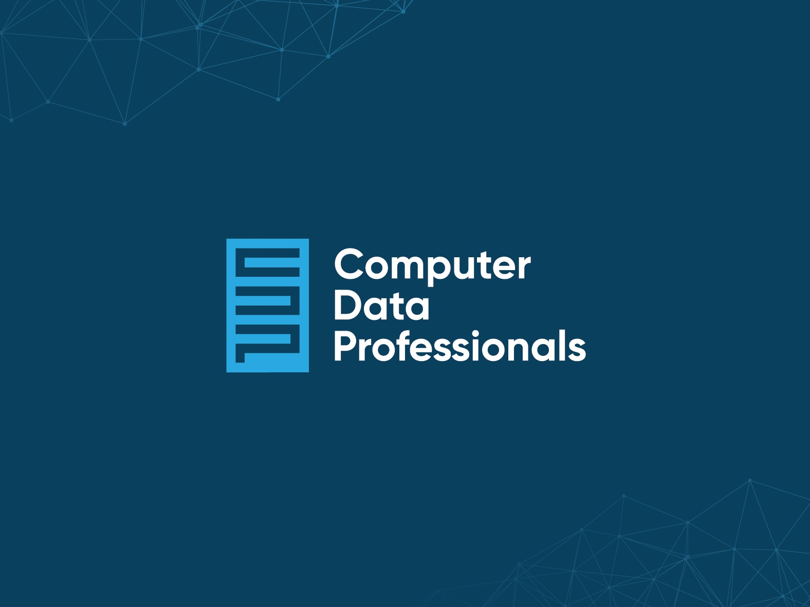 Computer Data Professionals 💻 brandidentity visualidentity professionals data computer designer digital designer digital design type minimal vector typography logo deisgn logo icon identity branding brand graphic  design design