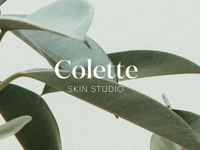 Colette Skin Studio Website websites web design graphic design skin care studio skin care web design skin care brand skin care website website design web design and development webdesign website