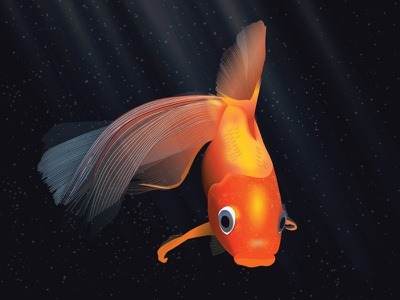 Goldfish underwater illustration beauty pet water aquarium gold fish