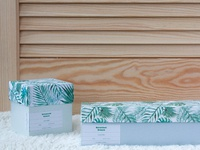 Botanical Dream Collection Branding