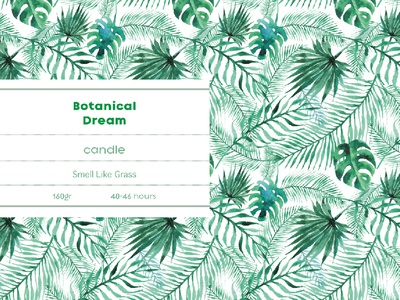 Botanical Dream Design Branding