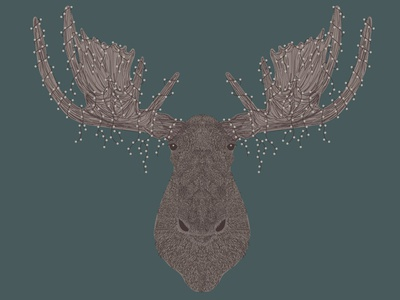 Twinkle light Moose