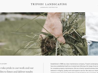 Tripodi Landscaping