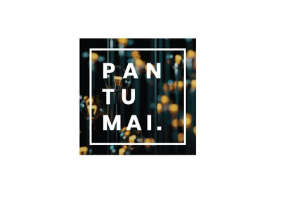 Logo design for Pantumai