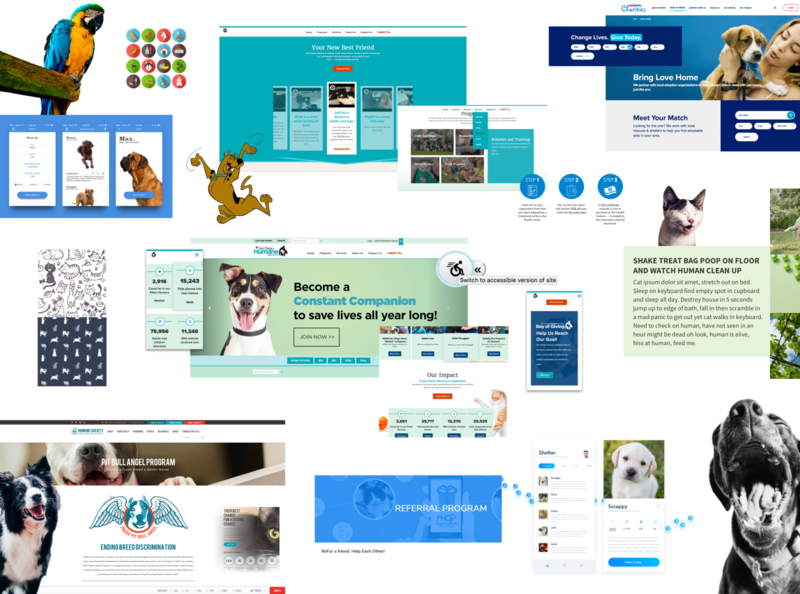 Moodboard82 pet fun website web design inspiration process moodboard branding brand