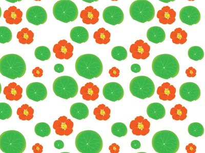 Nasturtium flower pattern flowers illustrator nasturtium pattern vector