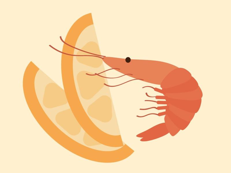 shrimp graphic illustrator illustration vector art lemon shrimp