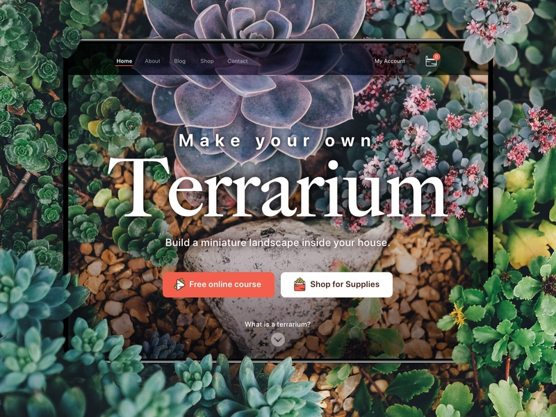 Terrarium Landing Page