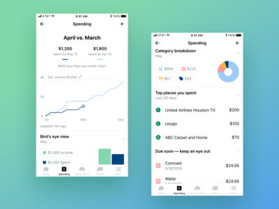 Nerdwallet Spending tab graph chart dashboard spending app
