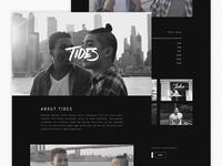 TIDES Website Preview