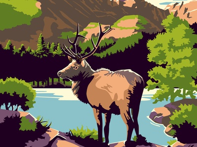 Rocky Mountain National Park rocky mountains outdoors national park travel tourism travel poster wildlife vector illustration