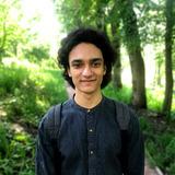 Amr Elwan