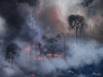 Amazon Wildfire destruction smoke forests enfangered protect fire rainforest jungle amazon wildfire wildlife artworks artwork painting illustration