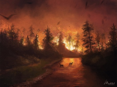 Wildfire art animals wildlife nature landscape design cover book photoshop drawing digital art australia fire artwork painting illustration
