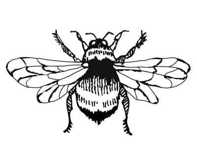 Bumble Bee Graphic art