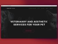 HealhyFriend, pet service