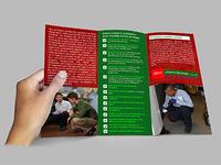 Bug Johnson Tri-fold Brochure Design