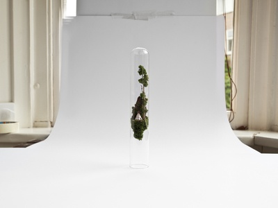 Photo shoot day  daylight window photo shoot handmade micro matter miniature