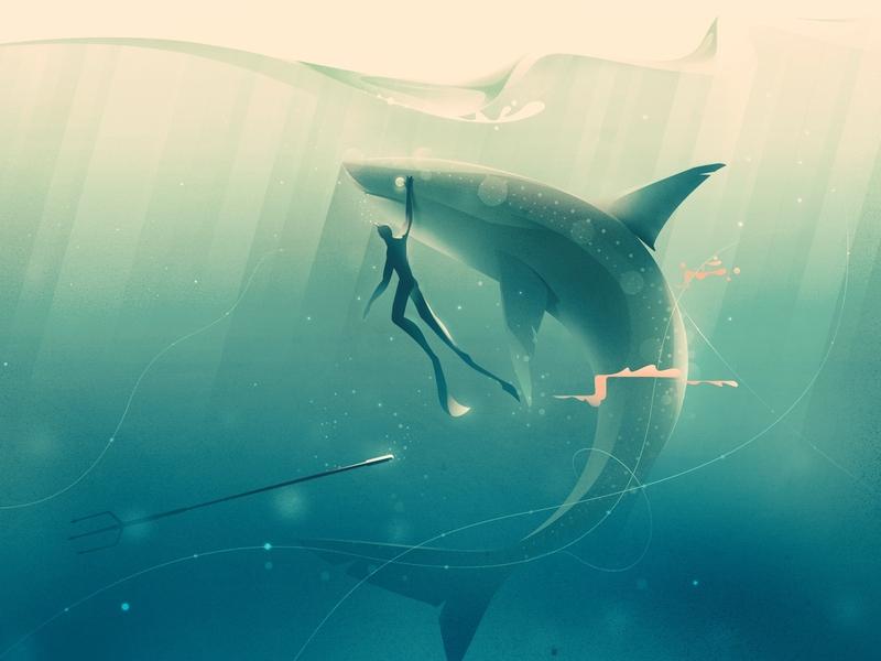 I see You design shark illustrator color illustration