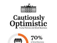 Cautious Optimism Infographic
