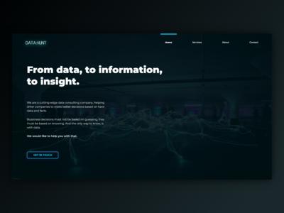 Data Company Website
