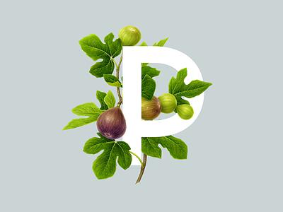 P R I M I T I A wip botanical italy food monogram logo design identity brand