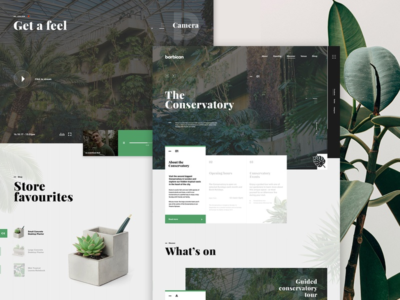 Barbican Conservatory | Homepage web design ux ui homepage website species plant tropical leaf nature conservatory barbican