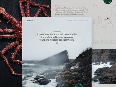 Under   Homepage Concept