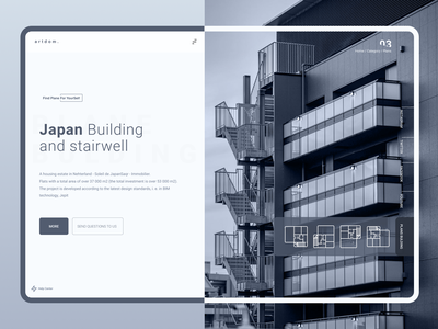 Artdom. clean architecture plane dynamic concept uidesign user experience dribbble userexperiance ui product ux design